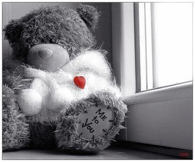 Câu chuyện về gấu ME TO YOU ! :x 490dbb16metoyou036