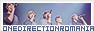 One Direction Romania