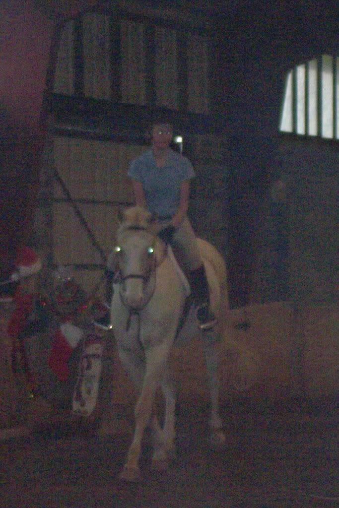 Various riding/confo pics/vids Gingerandhorseshow807