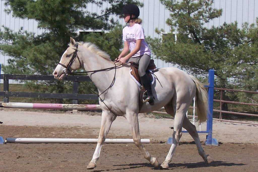 Various riding/confo pics/vids 100_3130