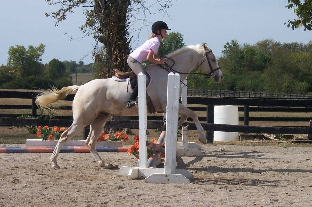 Various riding/confo pics/vids 100_3144