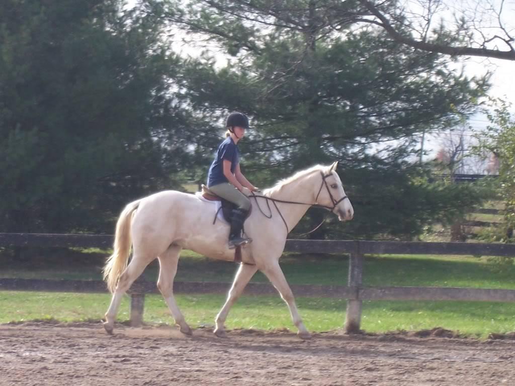 Various riding/confo pics/vids 100_4931