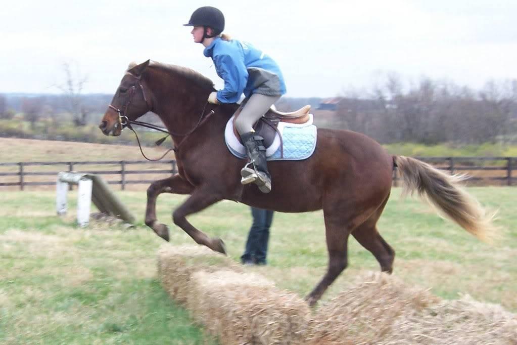 Various riding/confo pics/vids 100_4757