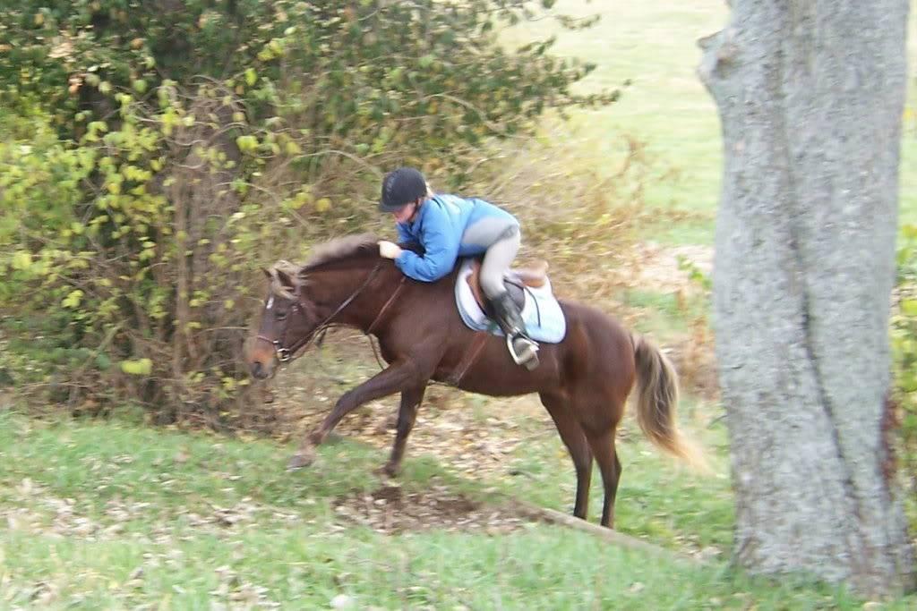 Various riding/confo pics/vids 100_4777
