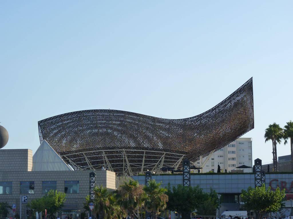 Barcelona-Ibiza-Mallora August 2012 P1180354