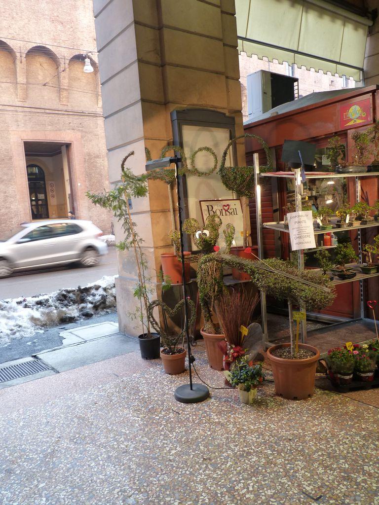 Toscana si Emilia-Romagna iarna It2012_220_zps8ef8f621