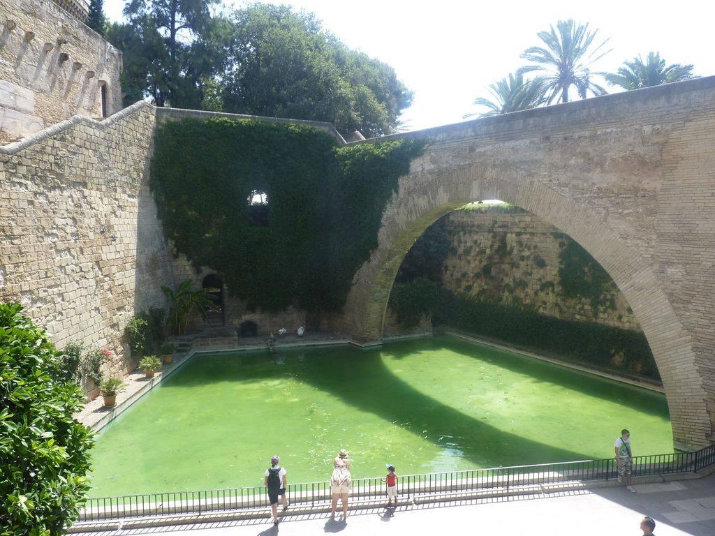 Barcelona-Ibiza-Mallora August 2012 P1200034