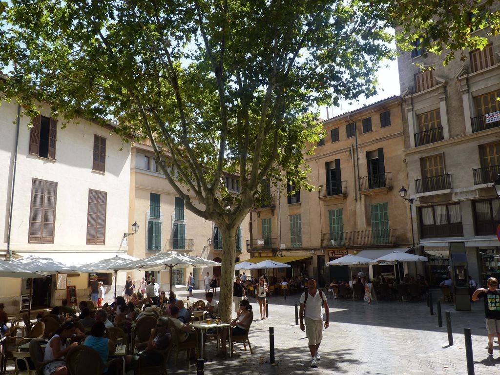 Barcelona-Ibiza-Mallora August 2012 P1200209
