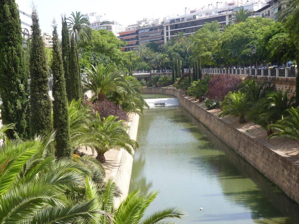 Barcelona-Ibiza-Mallora August 2012 P1200290