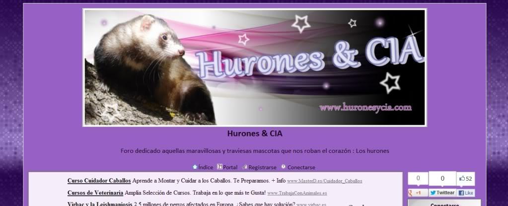 Foro Hurones & CIA Publi