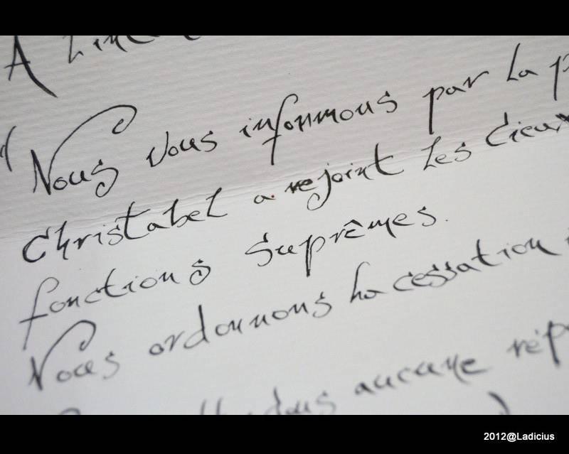 ♠ [Les Salauds Gentilshommes] Nota Bene P.48 ♠ 1-1-DSC_2106