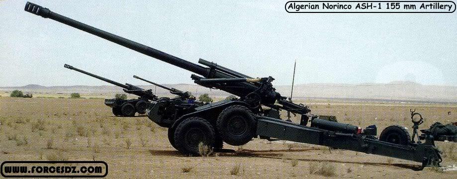 القوات البرية الجزائرية  2
