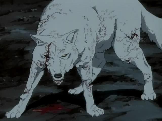 Let me break you ~ [ PV. Motta ] - Page 2 Kiba-wolfs-rain-4180873-640-480_zpscf62e5de