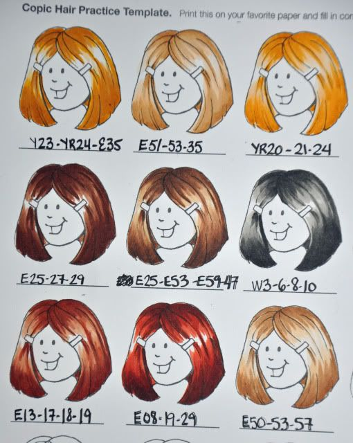 Recettes COPIC de cheveux DSC_6318