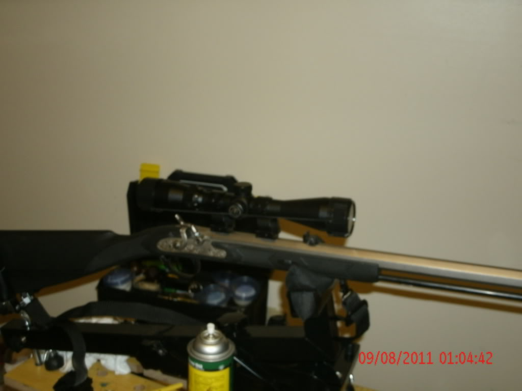 looking for two scopes 002