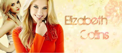 Muestrario - Firmas ElizabethCollins-2