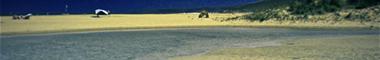 Foro gratis : Gorod Grehov Playa