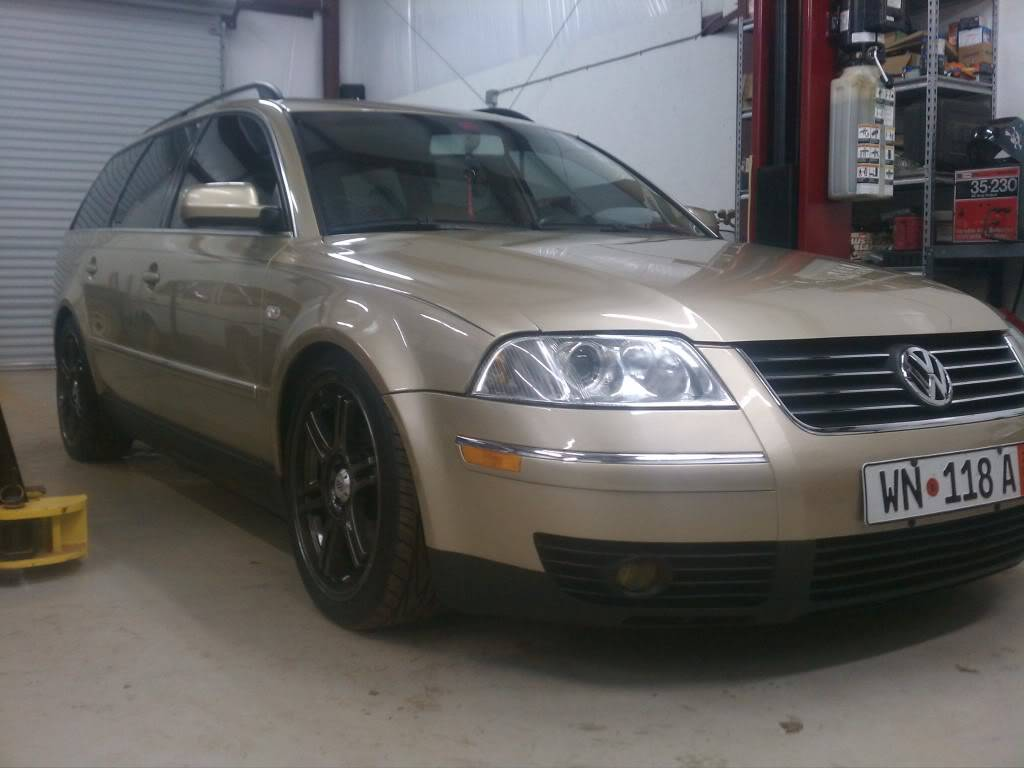 2003 Passat GLX Wagen/ The Goldmember (Goldshwagen) - Page 2 CEE19984-orig