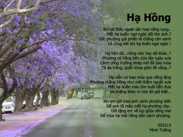 THƠ MINH TƯỜNG - Page 2 Hahong_zps8741b0f1