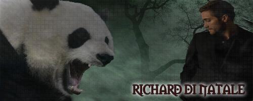Katherine Gallery (?) Panda