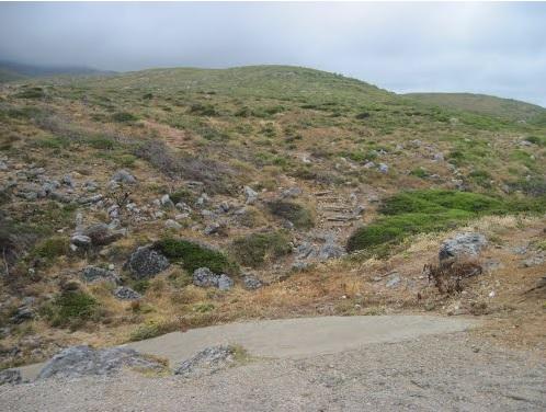 Hardscape - Areia, pedras e troncos no guincho. Abano4