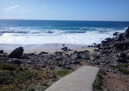 Hardscape - Areia, pedras e troncos no guincho. Abano5