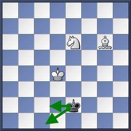Kỹ thuật chiếu hết bằng tượng và mã trong cờ vua (phần 2) 11-2