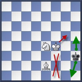 Kỹ thuật chiếu hết bằng tượng và mã trong cờ vua (phần 2) 22