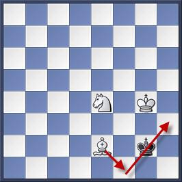 Kỹ thuật chiếu hết bằng tượng và mã trong cờ vua (phần 2) 24