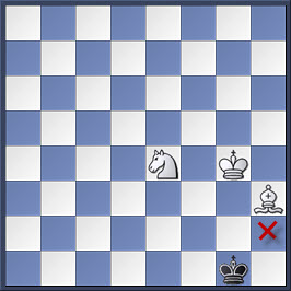 Kỹ thuật chiếu hết bằng tượng và mã trong cờ vua (phần 2) 28