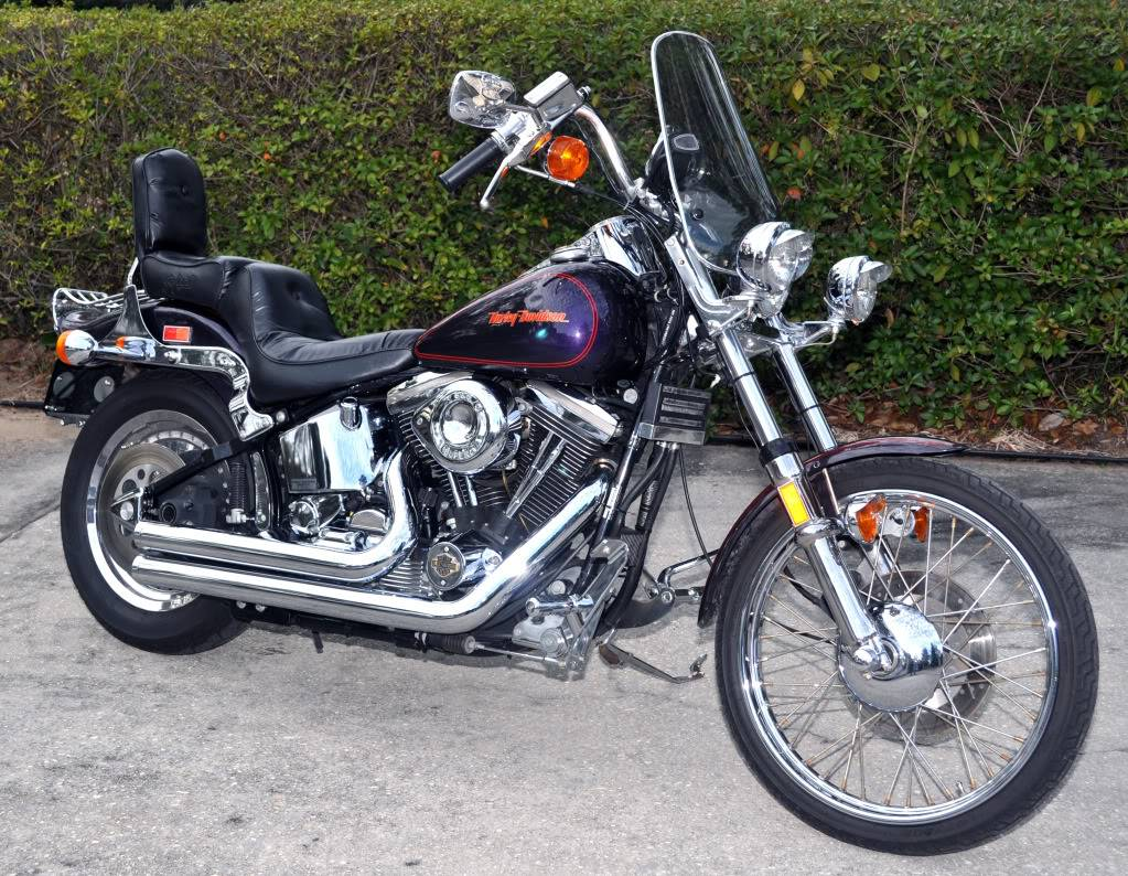 Looking for new lover! 1989 Harley-Davidson Softail Custom (FXSTC) 01