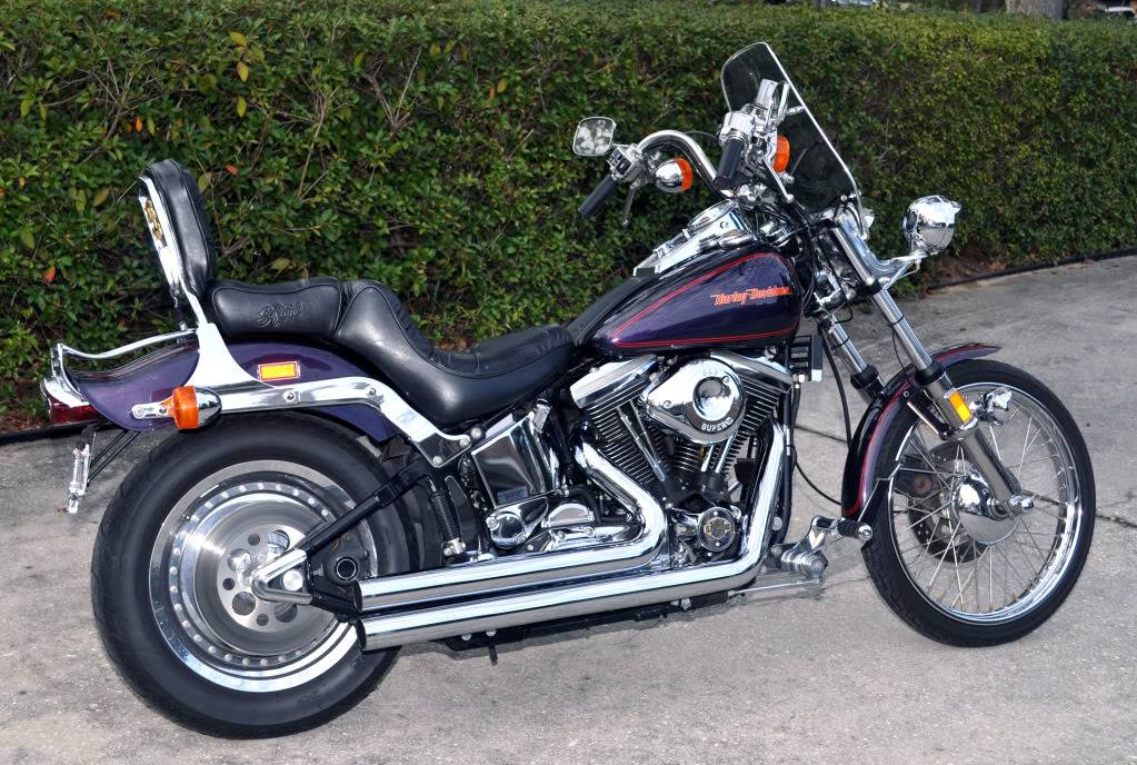 Looking for new lover! 1989 Harley-Davidson Softail Custom (FXSTC) 03