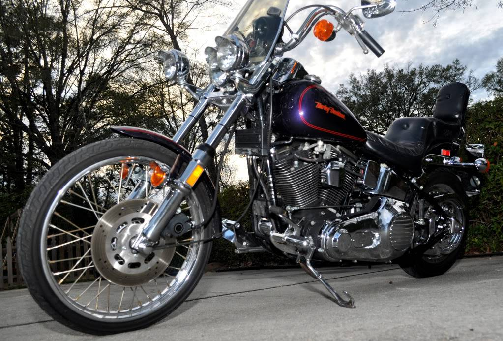 Looking for new lover! 1989 Harley-Davidson Softail Custom (FXSTC) 06