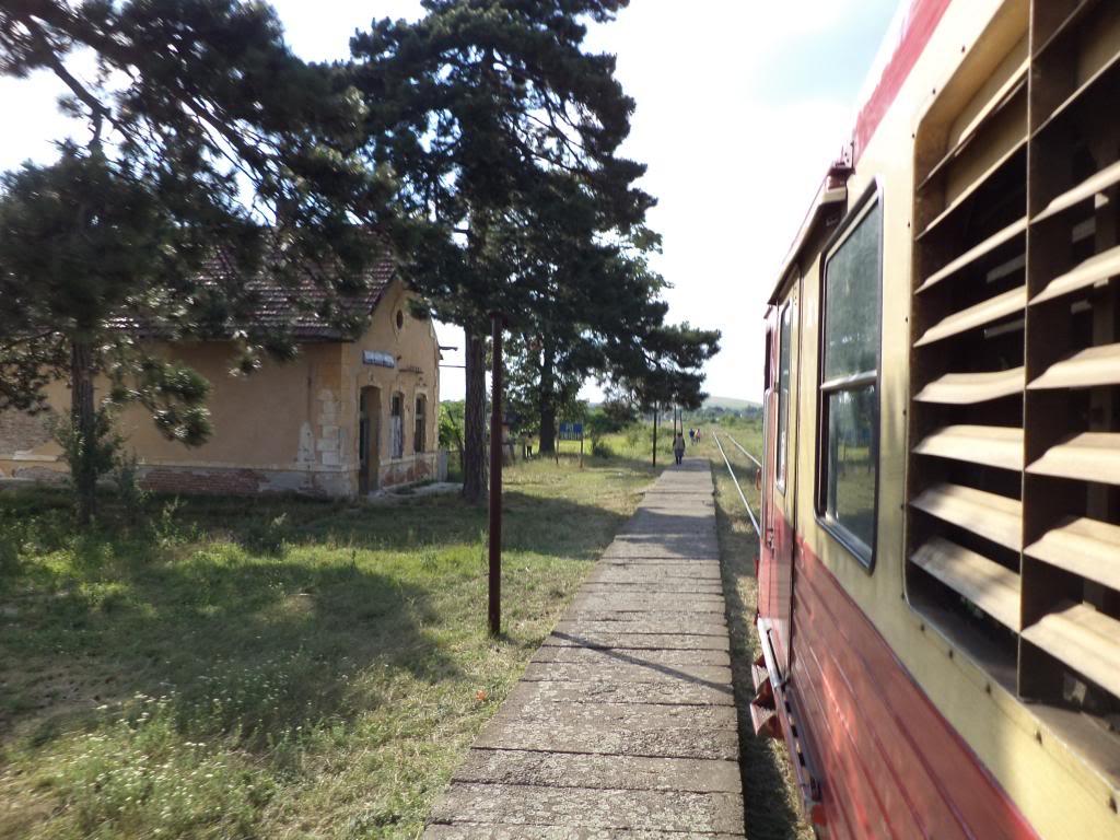 916A : Buzias - Gataia - Jamu Mare DSC03243_zps6703d2d2