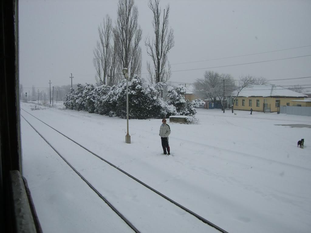 901 : Bucuresti Nord - Titu - Pitesti - Piatra Olt - Craiova CIMG5426