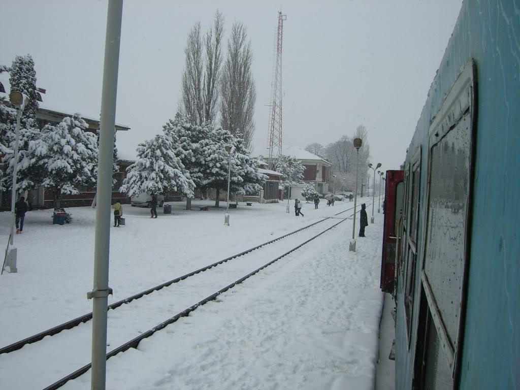 901 : Bucuresti Nord - Titu - Pitesti - Piatra Olt - Craiova CIMG5430