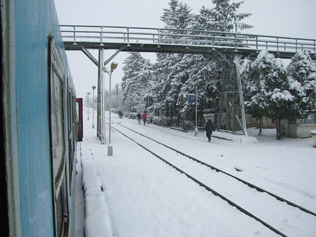 901 : Bucuresti Nord - Titu - Pitesti - Piatra Olt - Craiova CIMG5431