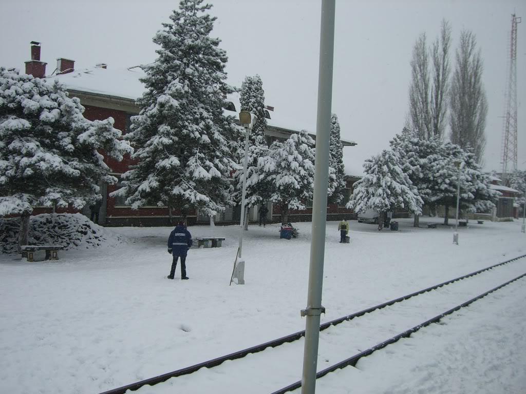 901 : Bucuresti Nord - Titu - Pitesti - Piatra Olt - Craiova CIMG5433