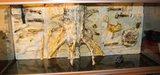 Création d'un décor en relief Th_DSC01666