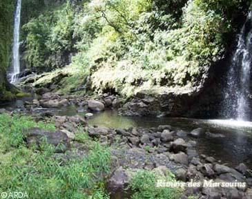 L'ile de La Réunion  Fgr