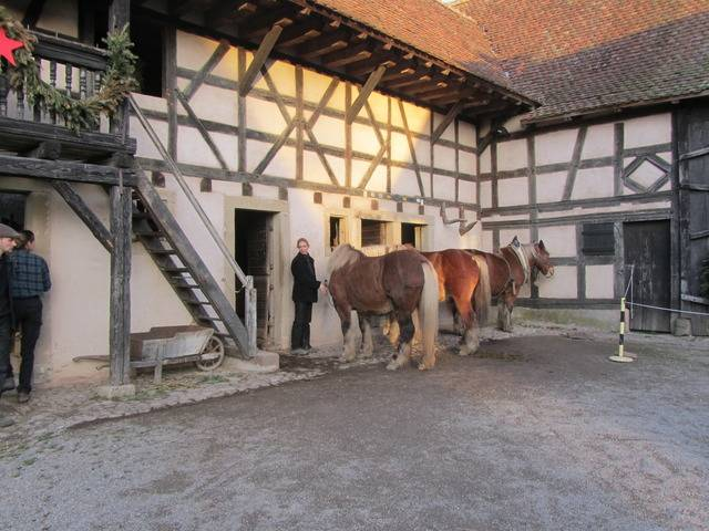 Ecomusée d'Alsace - Page 2 IMG_7931_zpsq5afhtxc