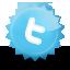 Flahear Samsung M310L Twitter