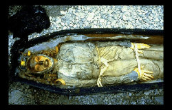 Lost Ships - The Franklin Expedition JohnTorringtonmummy-1-1