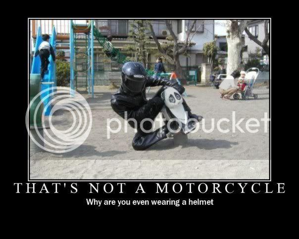 Amusing Photos - Page 13 4854_96276967485_523717485_1908143_