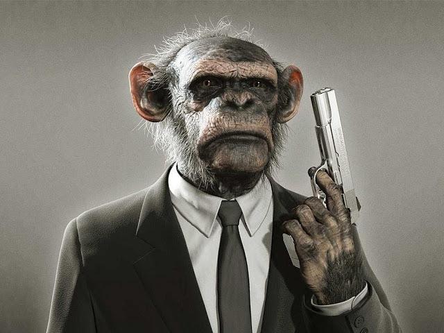 போருக்கு தயாராகும் சேனைப்படை! Funny-monkey-picture-11_zps1811d1a2