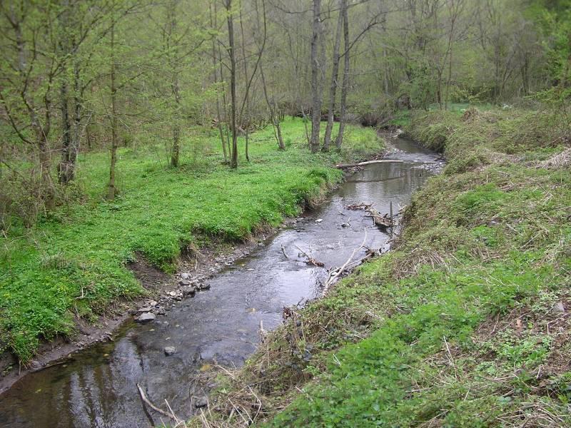 Rat, šuma, voda...... 173