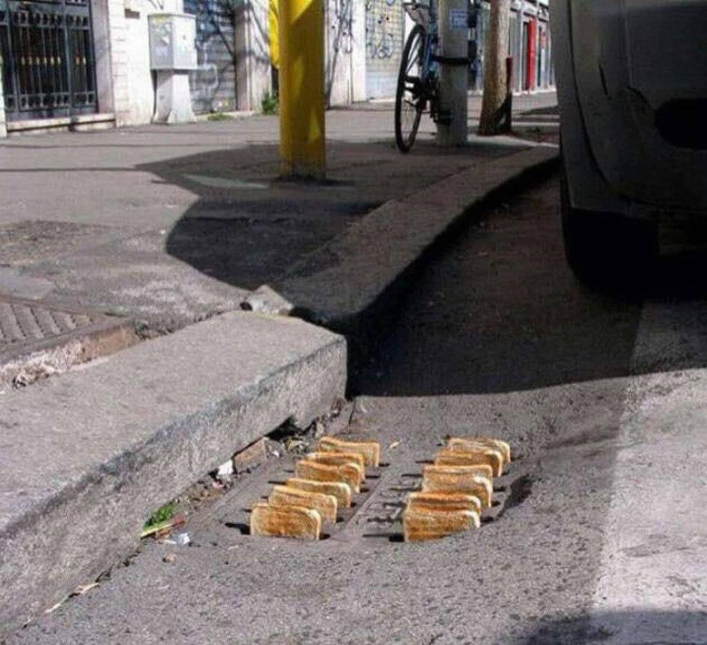 Jokes Page - Page 3 Toast_zps43rlj1xo