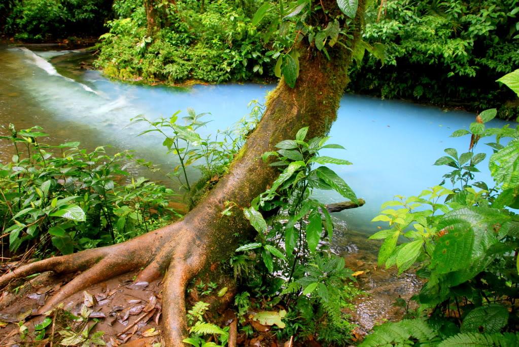 mi linda Costa Rica... 53727430