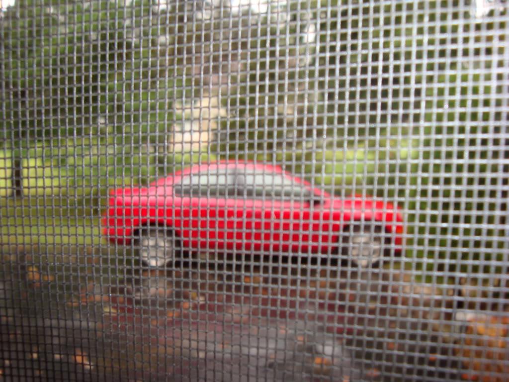 What Car Do You Drive? DSC04342