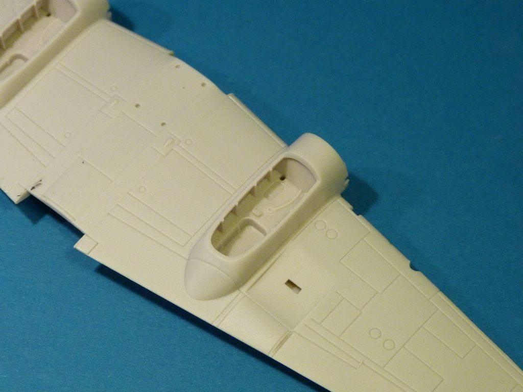 Haifisch-Zerstörer! P1030871_zpsfs8bflc8